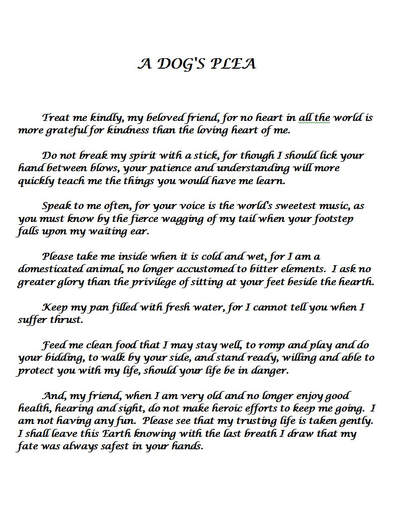A Dog's Plea It Is Sad But Sweet, I'm Warning You The Phrase